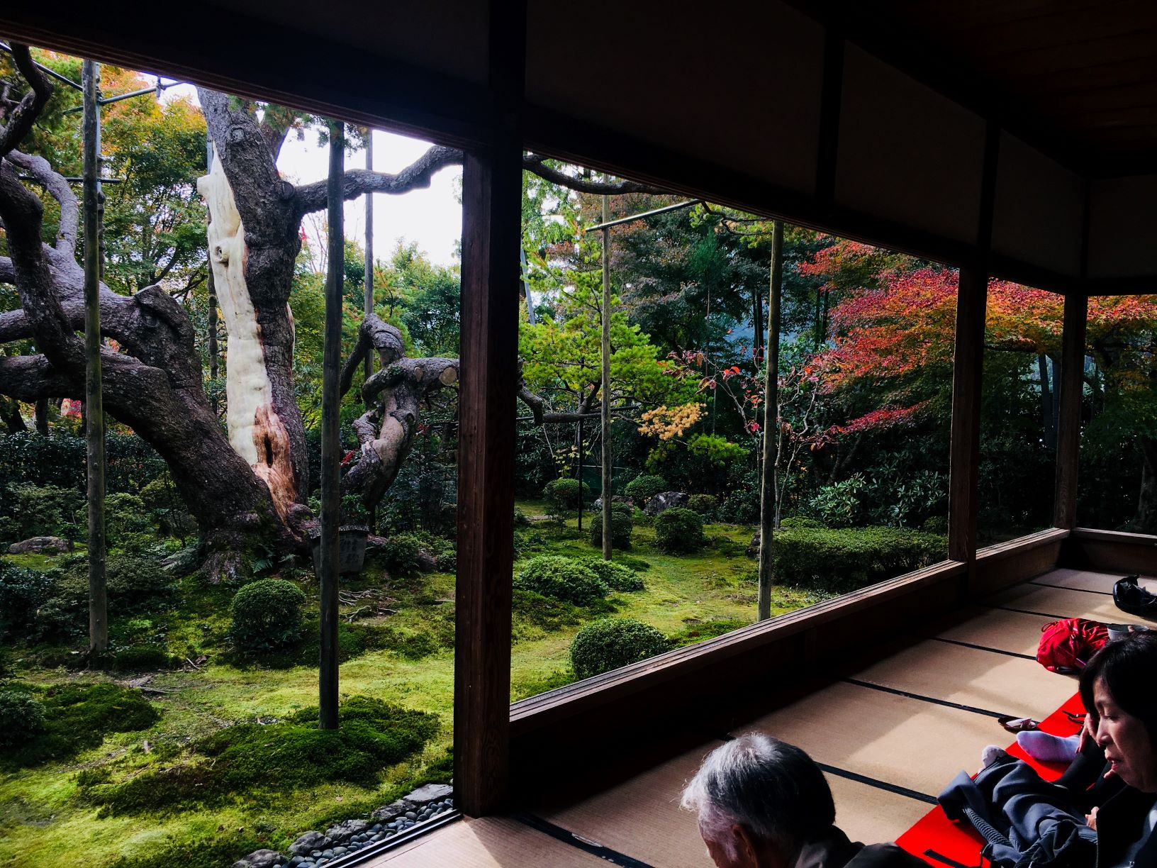 ~Series⑤~You must visit  ``Hoseiin-Templ...