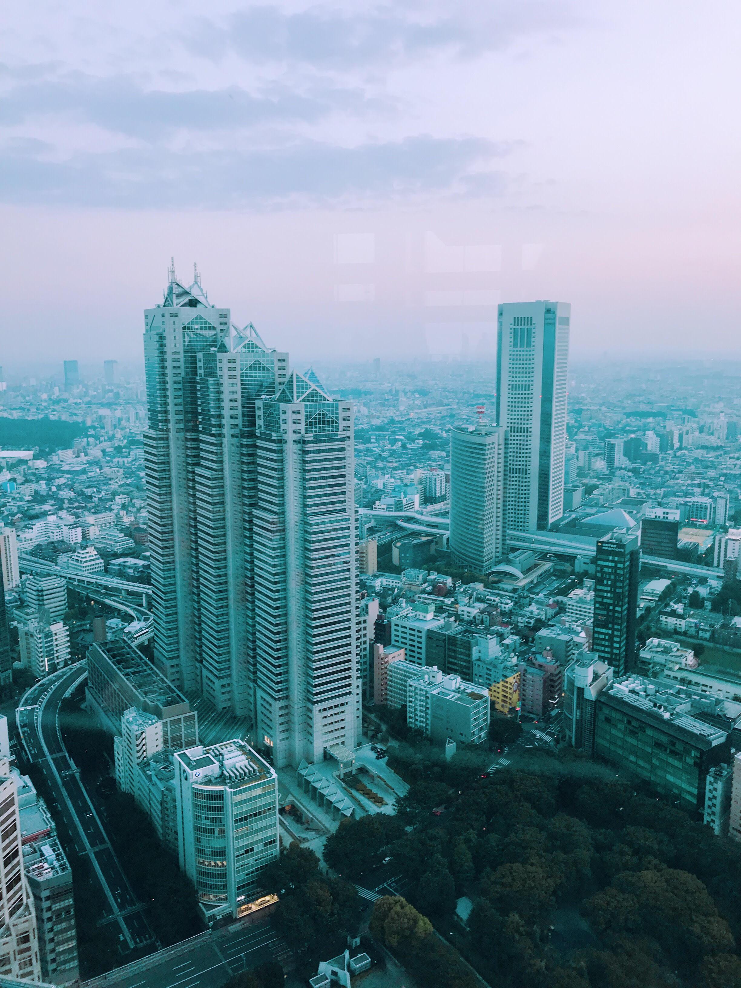 Tokyo Metropolitan Government Building obs...