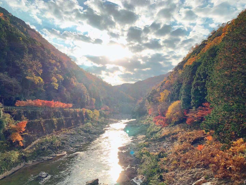 京都的红叶观赏圣地集锦