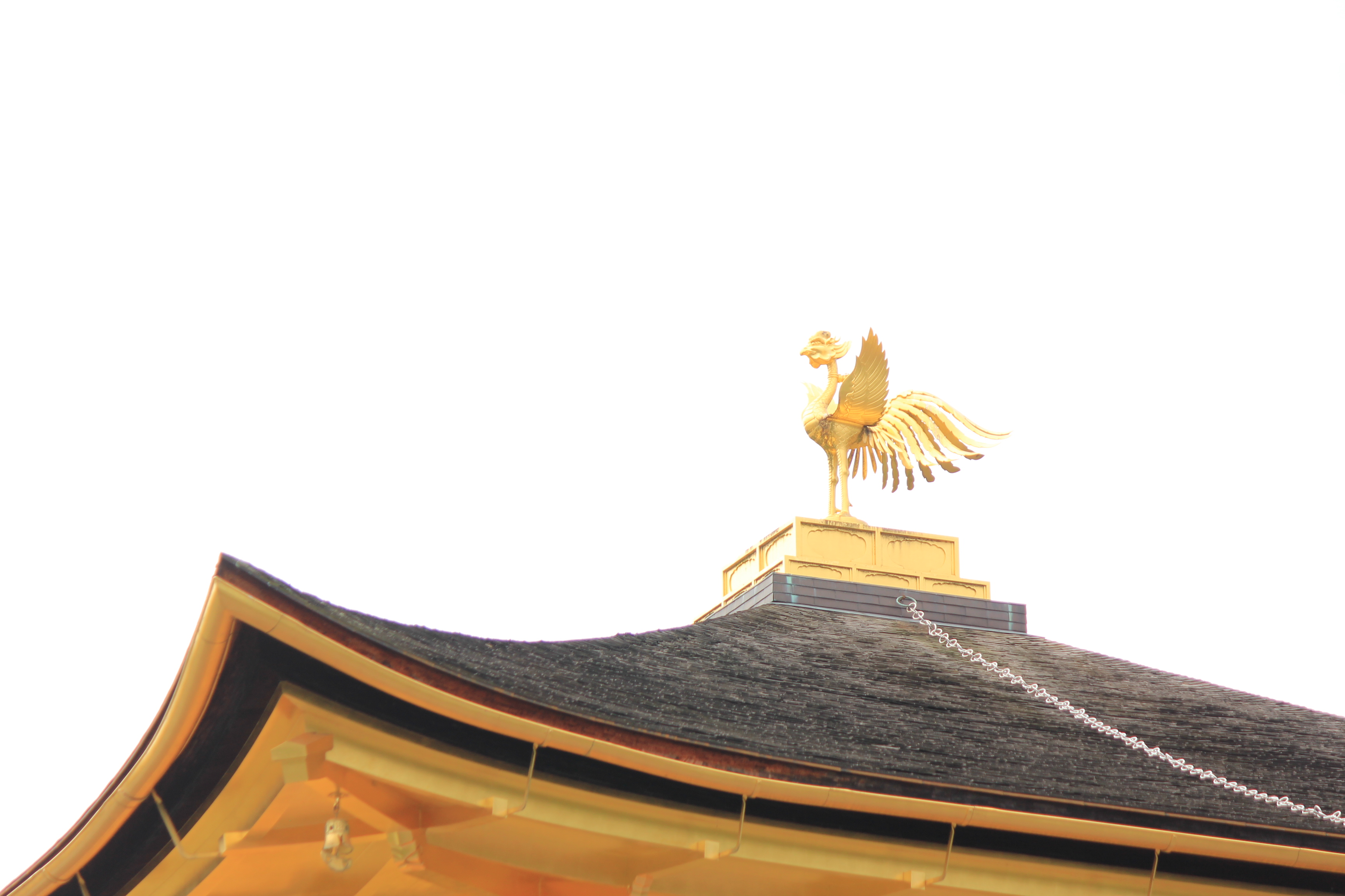 来日本过春节旅游吧